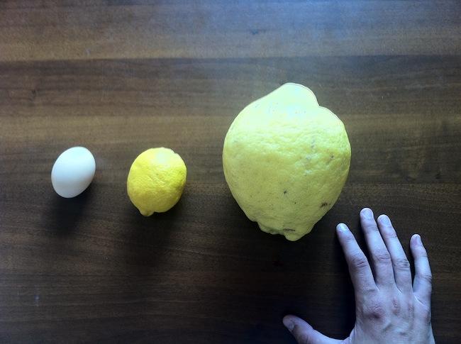 Голям лимон